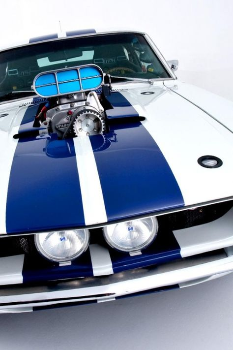 Stunning Shelby GT500 up close and personal