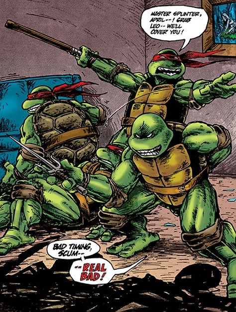 Teenage Mutant Ninja Turtle #1 Reprint TMNT Mike Vasquez Dark Leo Eastman IDW