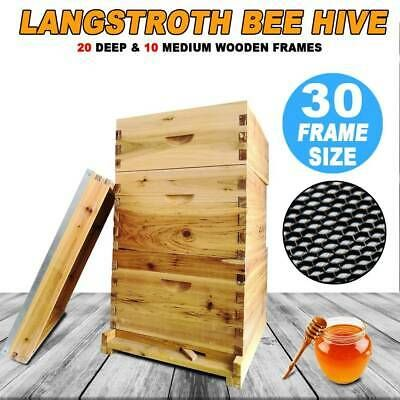 30 Frame Langstroth Beehive Frames Bee Hive Frame For Beekeeping Usa Stock In 2020 Framed Bee Bee Hive Bee Keeping
