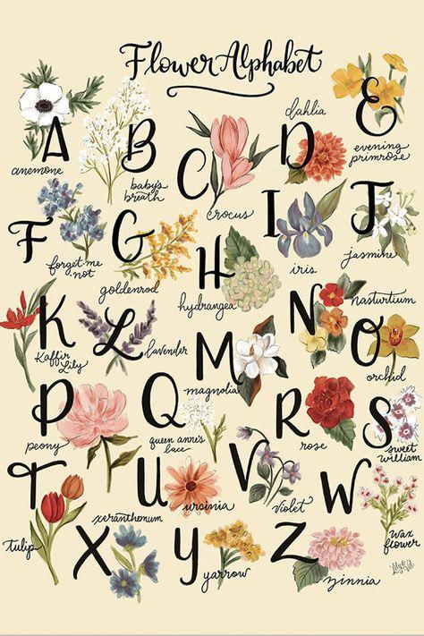 Flower Alphabet Illustrated Artwork