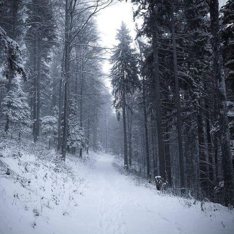 winter I still find each day too...