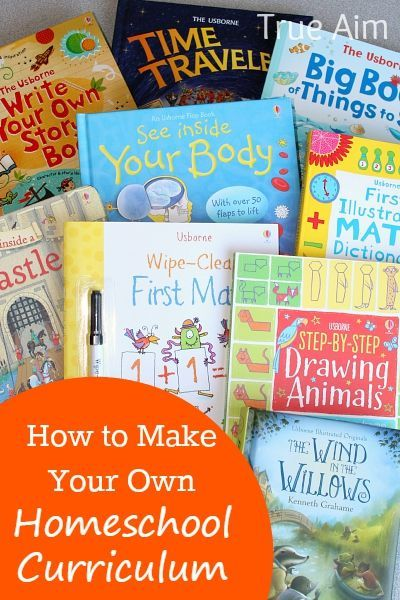 Make Your Own Homeschool Curriculum with Usborne Books! | True Aim