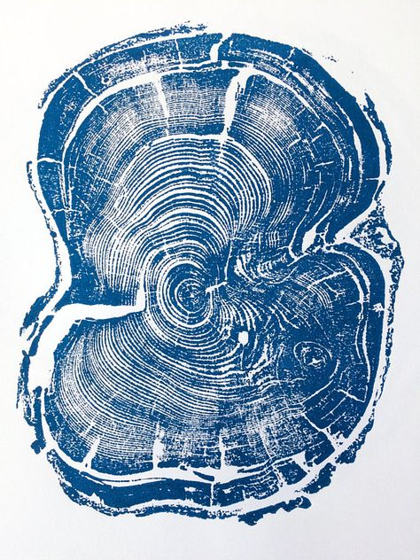 Wood grain print from real tree. Each tree ring print is like a fingerprint from Moth