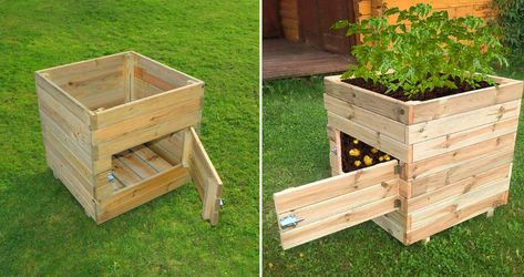 Growing and harvesting homegrown potatoes has never been easier with this wooden potato planter with a door.
