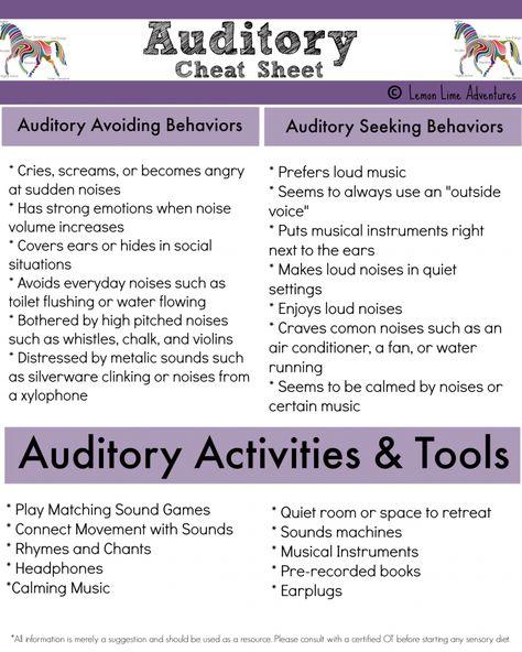 Auditory System: Sensory Processing Explained