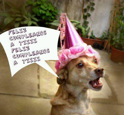 Feliz Cumpleaños A Ti Tarjetas De Cumpleaños Graciosas Cumpleaños Felicitaciones Graciosas Feliz Cumpleaños Erika