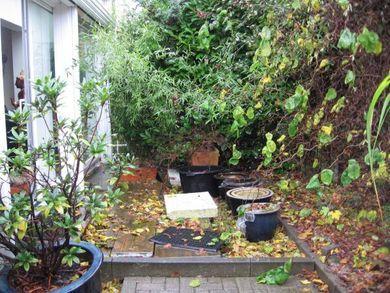Gartengestaltung In Dortmund Erstellt Von Garten Gerold Aus Kamen Gartengestaltung Garten Zufahrt