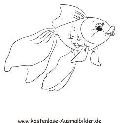 Ausmalbild Fisch 3 Ausdrucken Ausmalbilder Fische Ausmalen Ausmalbilder