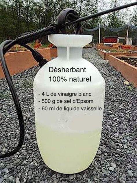 Plus besoin d'acheter de désherbant chimique! Utilisez plutôt ce désherbant 100% naturel!