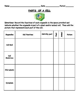Parts Of A Cell Organelles Cell City Worksheet Cell City Cell Organelles Organelles