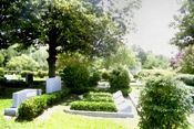 Where my parents (and dog) are buried in Temple Emanu-El Cemetery, Dallas, TX