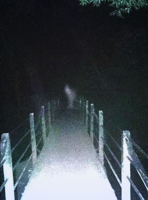 From full-blown apparitions to mysterious faces, here are 50 of the world's most chilling ghost photos Real Ghost Photos, Ghost Pictures, Creepy Pictures, Ghost Pics, Ghost Images, Photos Of Ghosts, Scary Photos, Spooky Places, Haunted Places