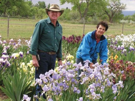 Willow Bend Iris Farm in Grand Junction, Colorado.