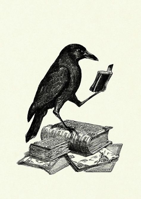 Halloween Raven Crow reading a Book - Victorian Steampunk art print Mehr illustration book Lesender Rabe Druck Gothic Krähe Buch Bücher Steampunk Kunstdruck Edgar Allan Poe Halloween surreal Bird Tattoo Men, Raven Tattoo, Crow Tattoo For Men, Black Crow Tattoos, Steampunk Kunst, Victorian Steampunk, Steampunk Diy, Halloween Illustration, Illustration Art