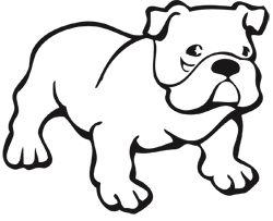For Kids Wichita Kansas Vet Hospital Dog Coloring Page Puppy
