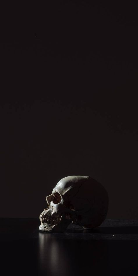 Pin by Stanislav Kushch on I Want More SKULLS in 2019