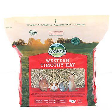 Oxbow Western Timothy Hay Oxbow Oxbow Rabbit Food Small Pets