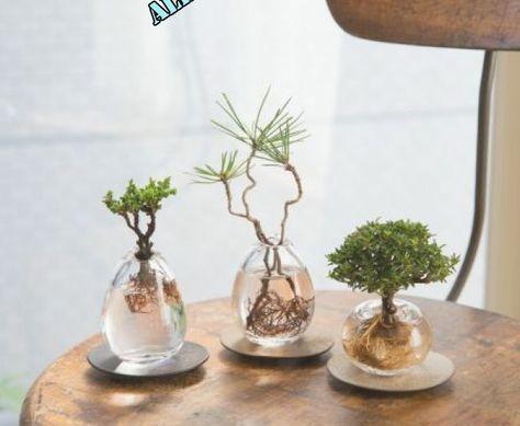 Pin on Decor #Diy,#Best,#Garden,#Deko   Pin on Decor #Diy,#Best,#Garden,#Deko