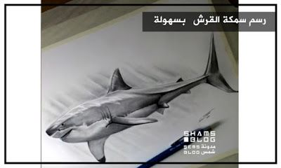 مدونة شمس تعلم رسم سمكة القرش Blog Posts Superhero Fictional Characters
