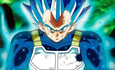 Vegeta Full Power Super Siyan Dragon Ball Anime Dragon Ball Super Dragon Ball Super Wallpapers Dragon Ball Wallpapers