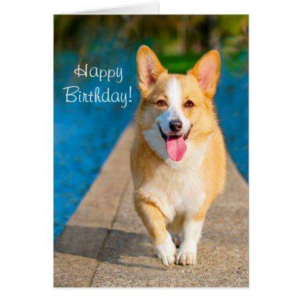 Happy Birthday Corgi Dog Card Zazzle Com Pembroke Welsh Corgi