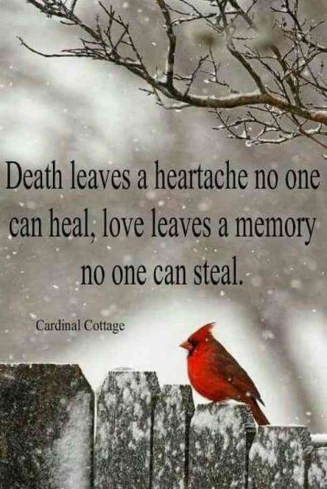 After the loss of your mother, Mother's Day can be full of heartache, so we found the best beautiful quotes about missing mom who passed away to help children dealing with grief after their mom's death. Life Quotes Love, Great Quotes, Inspirational Quotes, Missing Mom Quotes, Missing Daddy, Uplifting Quotes, Super Quotes, Sympathy Quotes, Sympathy Cards