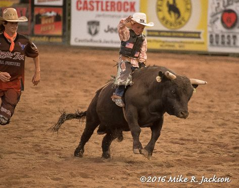 Rodeo Pee Wee Bull Rider Keeping Your Kids Safe From Online Trouble It seems the more advanced the o Cute Country Boys, Country Babies, Gaucho, Baby Animals, Cute Animals, Wild Animals, Rodeo Cowboys, Rodeo Cowgirl, Little Cowboy