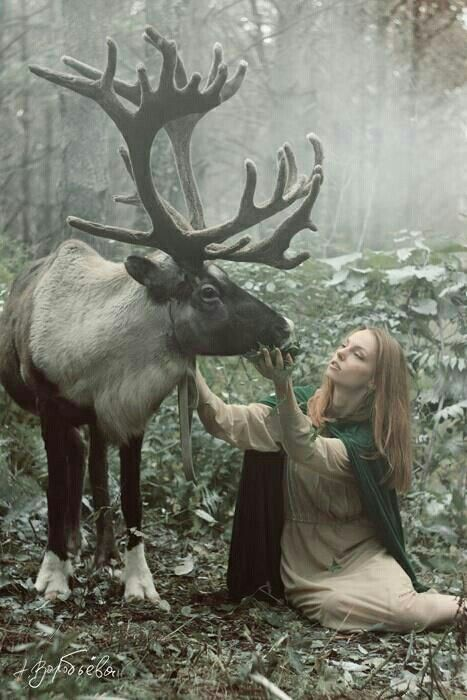 What She Does To Get A Photo Could Kill Her But Theyre Still - Russian photographer takes enchanting fairytale photos featuring wild animals