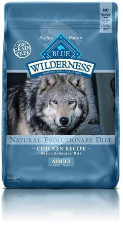 What Is The Best Dog Food For Fox Terriers Best Dog Food Dog