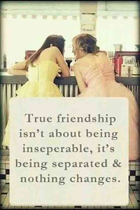 50 Friendship Quotes To With Your Best Friend Human