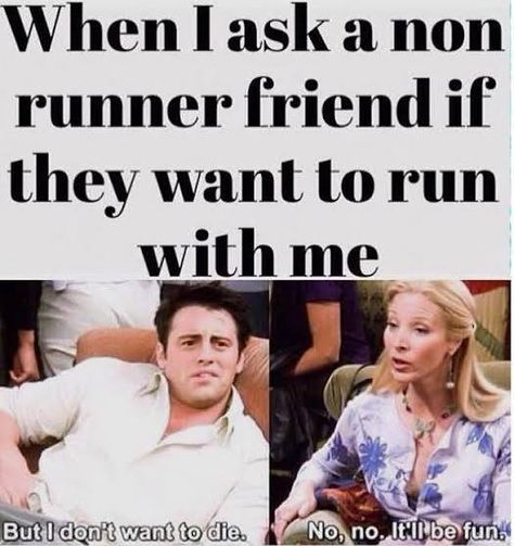 Humor Running Humor When I ask a non-runner friend if they want to run with me.Running Humor When I ask a non-runner friend if they want to run with me. Running Humor, Running Quotes, Running Motivation, Gym Humor, Workout Humor, Running Workouts, Fitness Motivation, Funny Running Memes, Fitness Humor