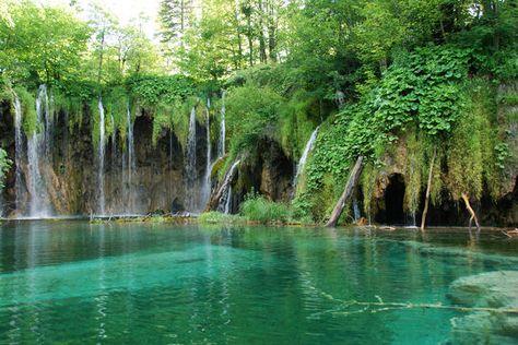 Un véritable labyrinthe naturel :Plitvice est l'une des plus belles réserves naturelles d'Europe, fruit de l'érosion situé en Croatie. Son paysage est une succession de cavernes, de forêts, de chutes d'eau et de lacs disposés en gradins qui se jettent les uns dans les autres.