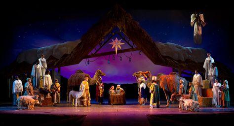a2234ad8c82042fc459705c44af37b68  celebration orlando christmas in florida - Busch Gardens Platinum Pass Free Guest