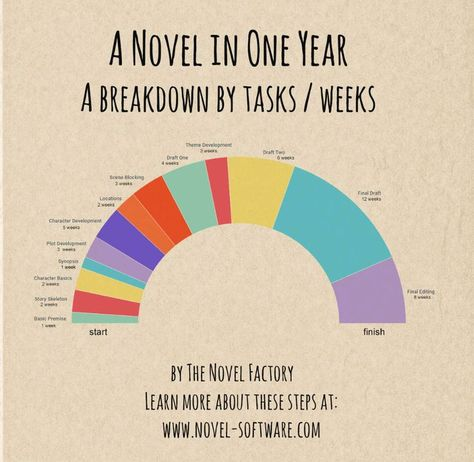 A Novel in One Year (infographic)
