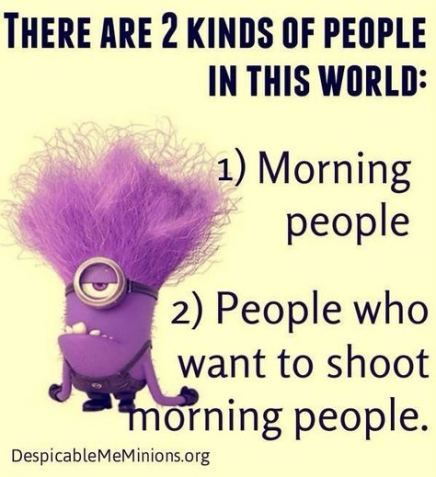 Trendy Funny Good Morning Quotes Hilarious Mom Ideas Funny Quotes With Images Minions Funny Funny Good Morning Quotes Funny Words