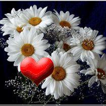 Roze Ruchome Animowane Gify Darmowe Obrazki Gify Na Stylowi Pl Flowers Gif Flowers Beautiful Romantic Pictures