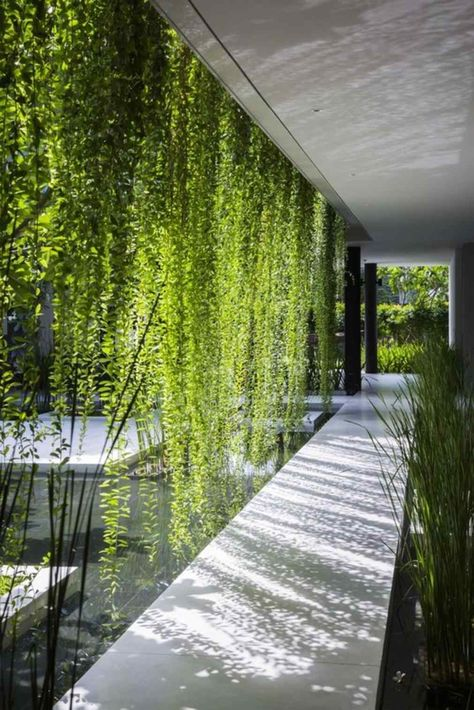 25 Gorgeous Outdoor Living Wall Ideas for Inspiration