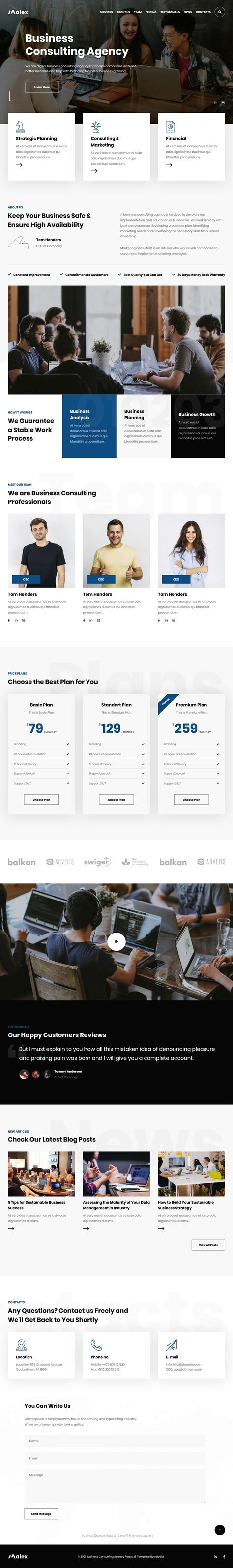 Malex Business Consulting Agency React JS Template