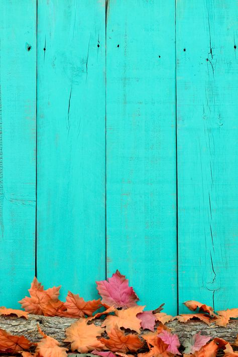 Blue Wood and Leaves iPhone Wallpaper