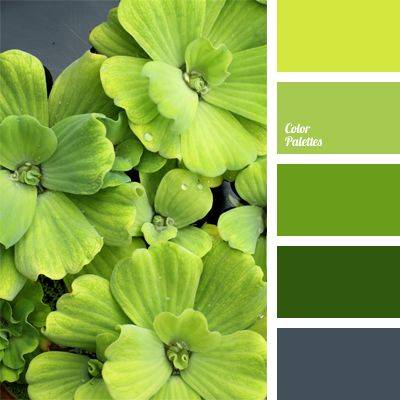 The combination of spring green tones and yellow-green hue is complemented with blue-gray color. This palette can be used to design a spacious kitchen; for