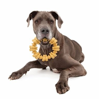 Top 10 Best Dog Toys Of 2019 Reviews Dog Toys Advisor Best