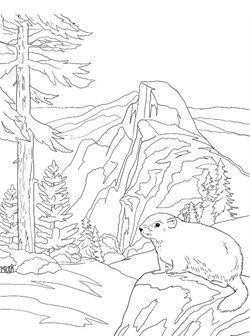 Kids N Fun Com 16 Coloring Pages Of National Parks United States