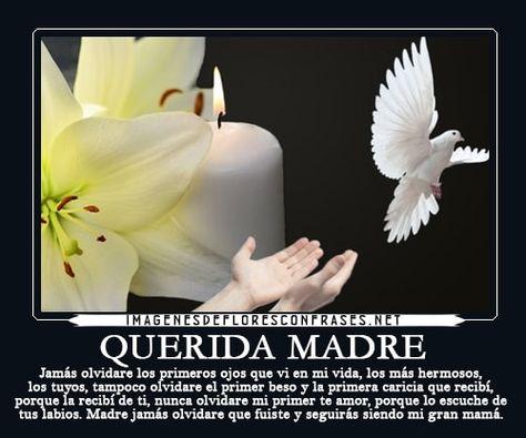 List Of Pinterest Pesame Condolencias Mama Images Pesame