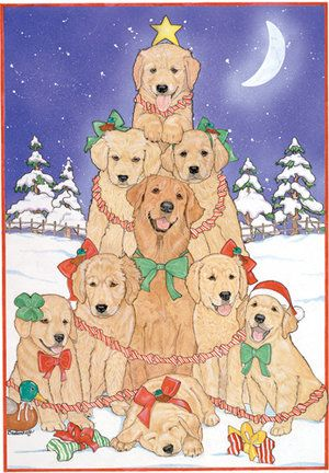 Golden Retriever Christmas Card From Www Twowoofs Co Uk With