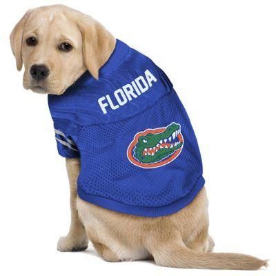 103 best Gator Pets images on Pinterest | Florida gators, Dog ...