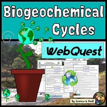 What Are The Biogeochemical Cycles How Organic And Inorganic Nutrients Cycled Between Living And Non Living Things How D Nutrient Cycle Webquest Carbon Cycle