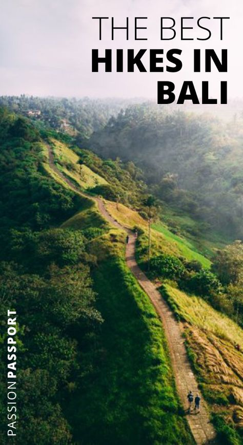 (Campuhan Ridge Walk, Ubud, Bali) Certain places were intended to be explored by foot — and if you ask us, #Bali fits the bill. A #trek across the Island of the Gods would bring one through #exotic rainforests, across terraced #ricepaddies, and up and over majestic #volcanoes. Grab your trekking poles — it's time to take to the trails. (Photo by Fredrik Helliesen.) | Passion Passport #BaliHikes #Hiking #BestHikes #Summer2019 #ThingsToDo #Ubud