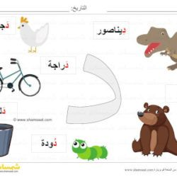 بطاقة عرض ملونة حرف الدال صور لكلمات تبدأ بحرف الدال شمسات Kids Education Education Kids