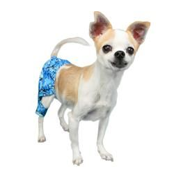 Shark Swim Trunk Dog Swimming Small Dog Clothes Dogs