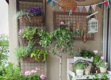 Balkon Ideen Blumen Die Richtigen Pflanzen Fur Den Balkon Ratgeber Obi Balkon Ideen Pflanzen Terrasse Blumen